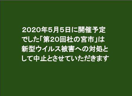 200226 杜の宮市中止のお知らせ (2).jpg